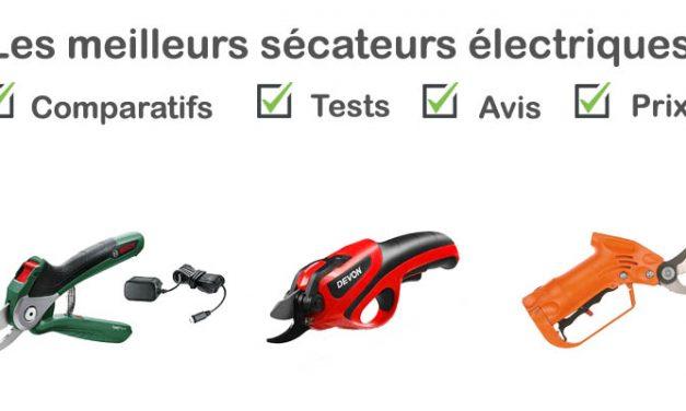 Sécateur électrique : tests, comparatif, avis, prix